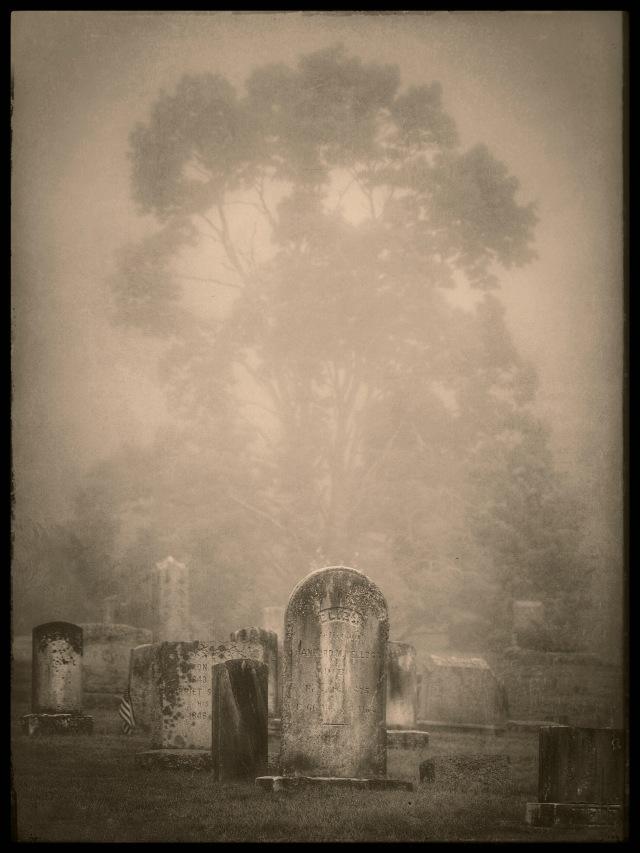 Mourning fog, Brookfield, Connecticut © Steven Willard